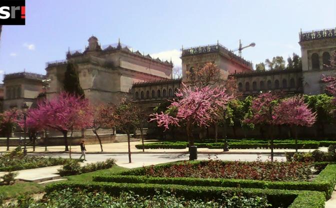 Museos ocultos al abrigo del Parque de María Luisa